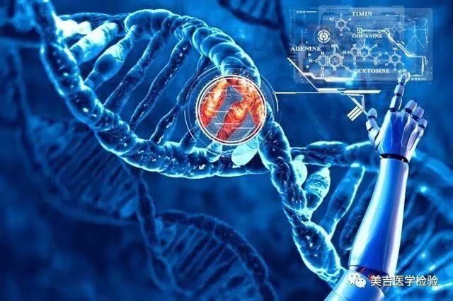 张博士讲堂二   PTEN基因与多癌种的相关性