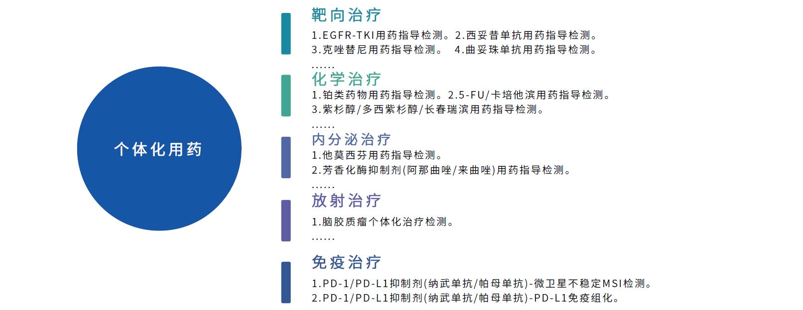 肿瘤个体化用药检测基础版1.png